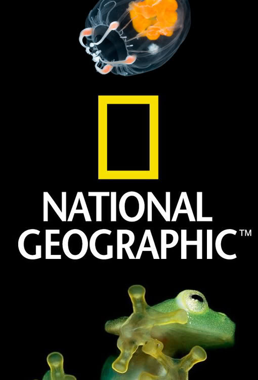 national_geographic_logo22-1.jpg